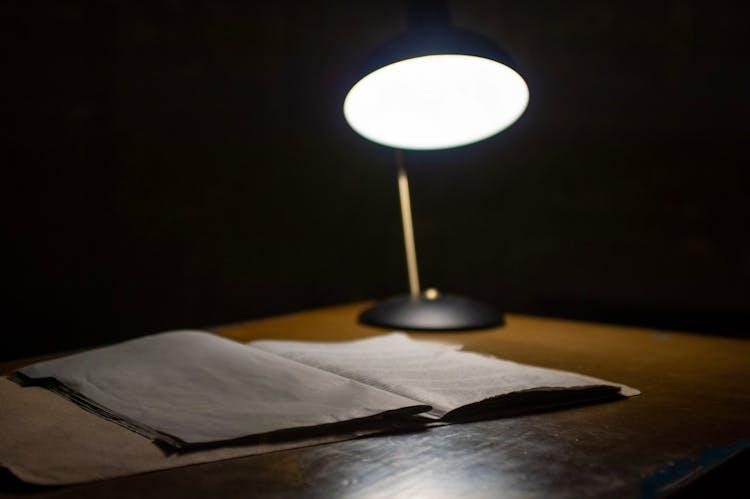 Investigation light