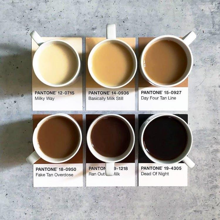 Colours of tea