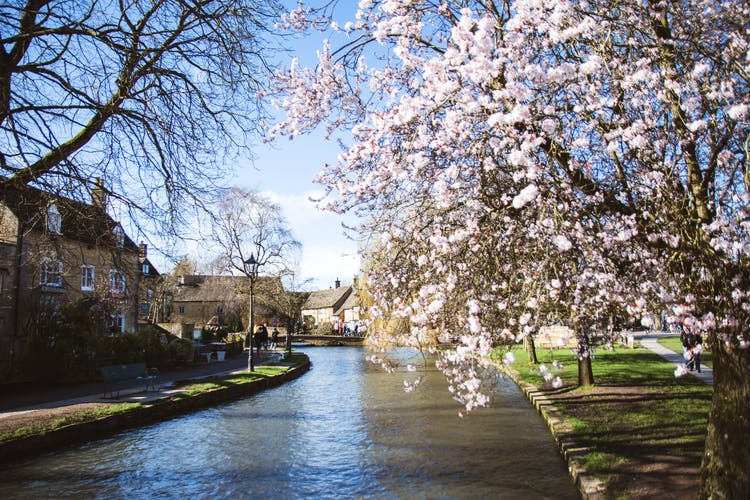 Cotswold canal